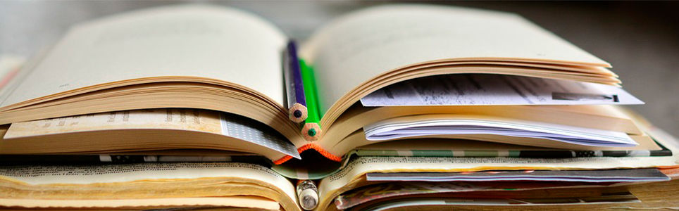 Um quarto todo nosso: traçados literários